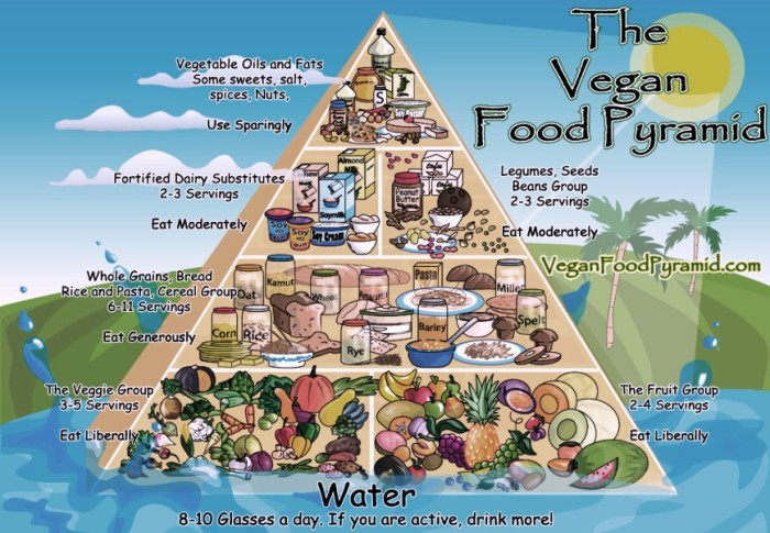 piramide-de-la-comida-vegana